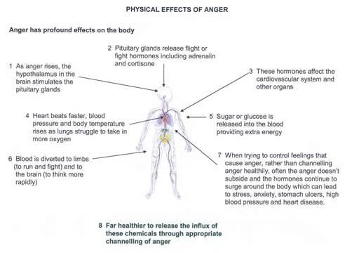 Physical Effect of Anger